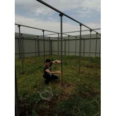 Методика выращивания киви в условиях Украины.